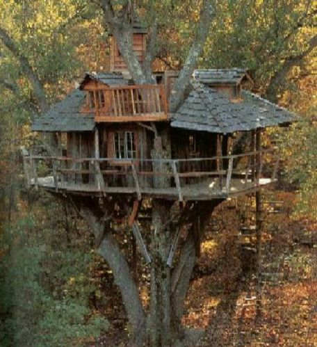 Awesome Treehouse Masters Design Ideas 104