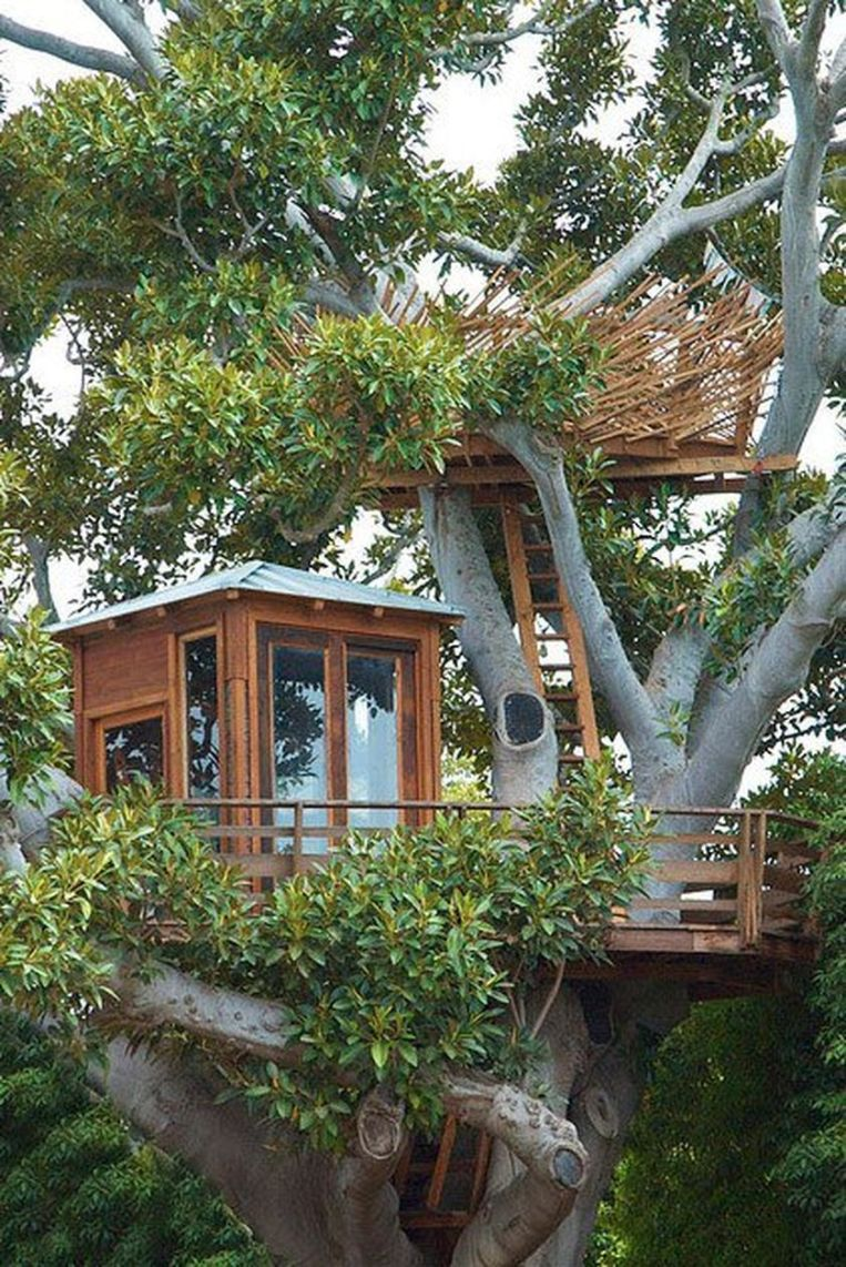 Awesome Treehouse Masters Design Ideas 107
