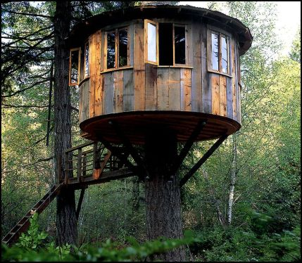 Awesome Treehouse Masters Design Ideas 109