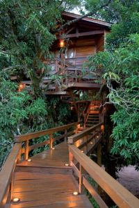 Awesome Treehouse Masters Design Ideas 25