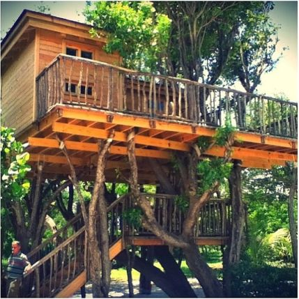 Awesome Treehouse Masters Design Ideas 54