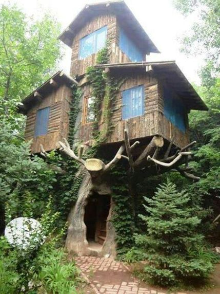 Awesome Treehouse Masters Design Ideas 73