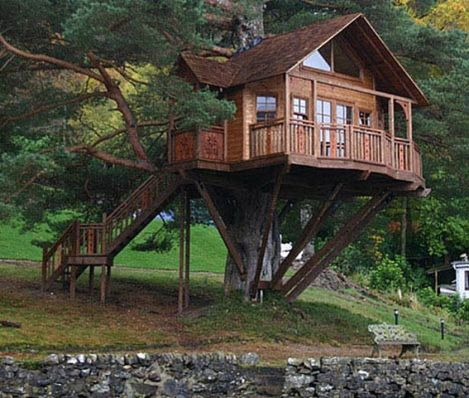 Awesome Treehouse Masters Design Ideas 77