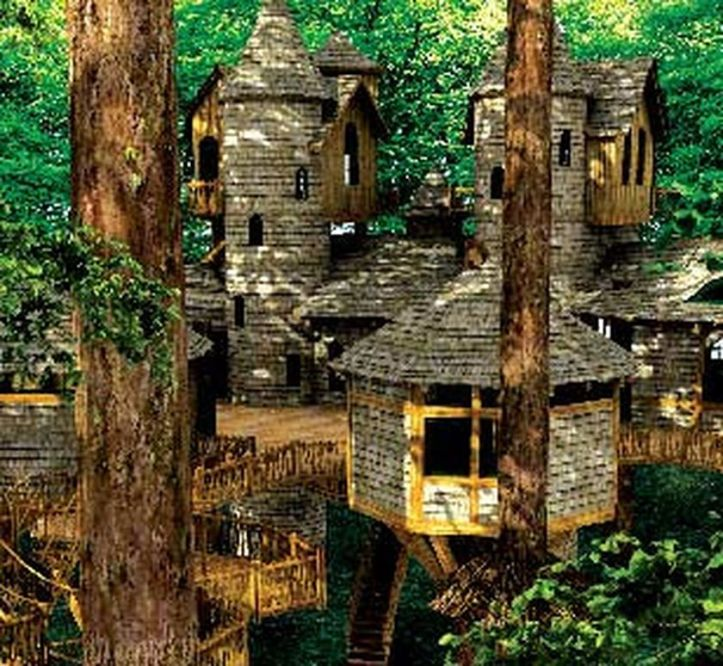 Awesome Treehouse Masters Design Ideas 78