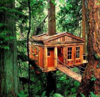 Awesome Treehouse Masters Design Ideas 83