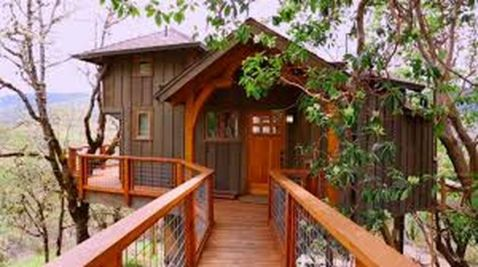 Awesome Treehouse Masters Design Ideas 9
