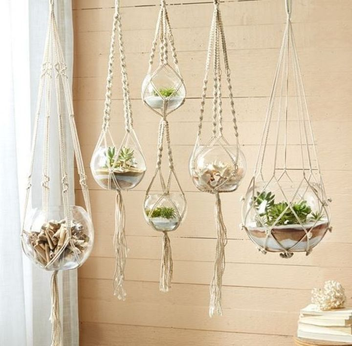 Stunning Diy Succulents For Indoor Decorations 14