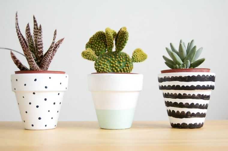 Stunning Diy Succulents For Indoor Decorations 16