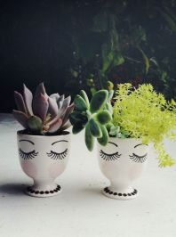 Stunning Diy Succulents For Indoor Decorations 21