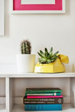 Stunning Diy Succulents For Indoor Decorations 38