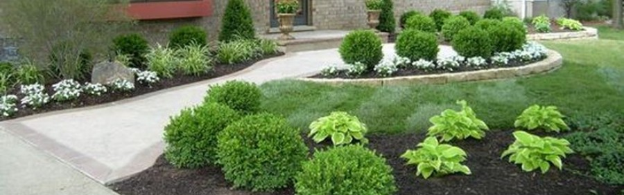 Low Maintenance Garden Landscaping Ideas Featured