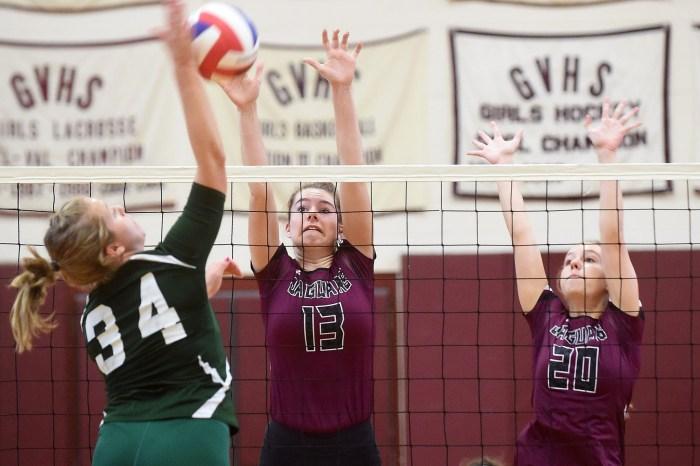 Davis helps Garnet Valley earn Central League title