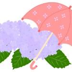 傘と紫陽花の素材