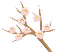 梅の花(JPEG)