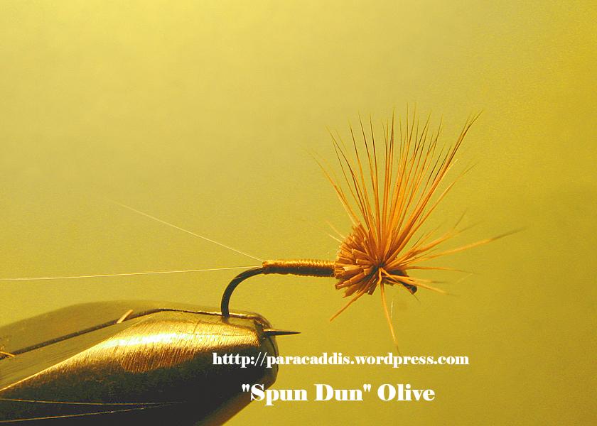 Olive Spun Dun