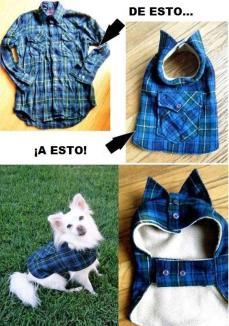 Como hacer ropa para chihuahuas