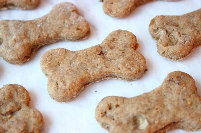 Cómo hacer golosinas para tu chihuahua – Recetas de premios para perros