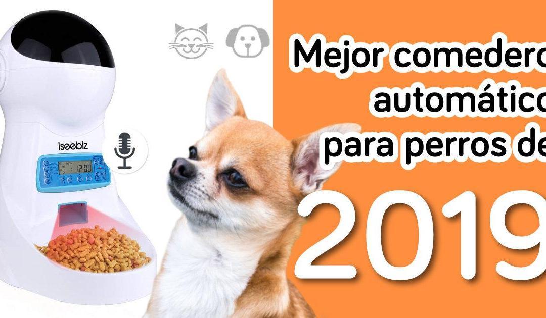 mejor comedero automatico para perros de 2019