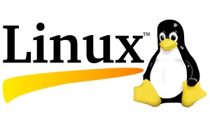 "Ballmer Says Linux is ""Cancer"""