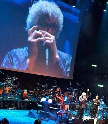 Northampton Jazz Workshop features harmonica and vibes player Hendrik Meurkens