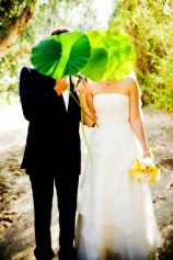 Paradise Gardens - Tropical Weddings