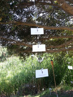 Escort cards hanging from ficus tree