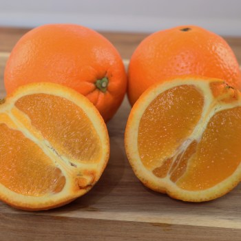 Washington navel orange fruits