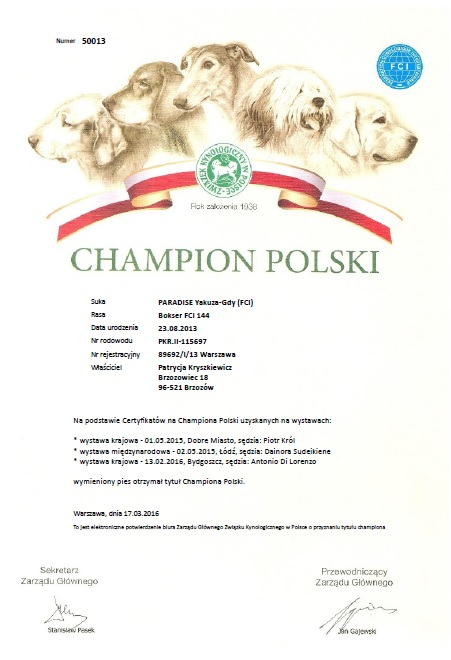 Champion Polski PARADISE