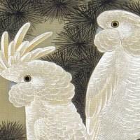 動植綵絵 12  老松鸚鵡図  Rosho Omu-zu(Old Pine Tree and Cockatoos)