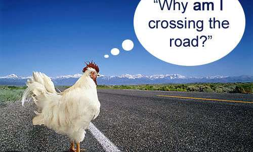 Philosophy jokes – part 3 (Why did the chicken cross the road?)