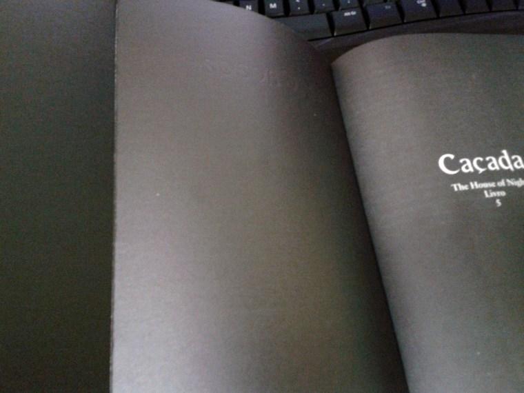 (10) exemplo de verso da capa trabalhado. Caçada de P.C. Cast.