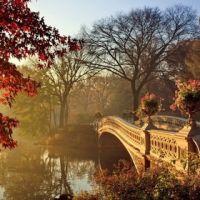 В осеннем парке благодать! - стихи