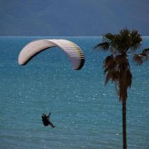 Paragliding_Albania_9th_FAI_tree_sea_parachute