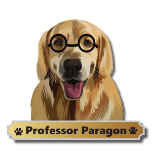Professor Paragon