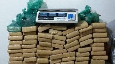 Balanço: polícia apreende mais de 120 kg drogas na Paraíba durante fim de semana