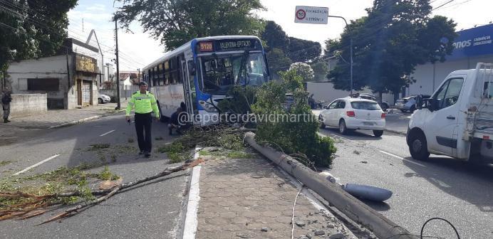 Motorista de ônibus passa mal e veículo colide em poste e árvore em Cruz das Armas