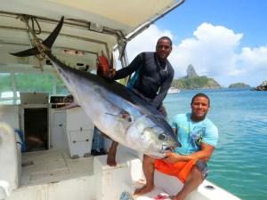 peixe-gigange-1