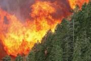 Incendios han dañado 3.3 hectáreas del país