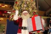 Galerías Vallarta encendió el tradicional árbol y el espíritu navideño de la ciudad