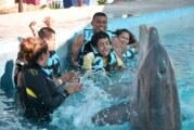 Personas con discapacidad reciben terapia con delfines