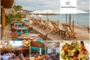 Vuelve el Restaurant Week a la Riviera Nayarit con récord de participación