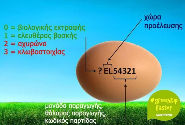 exipno-kolpo-gia-na-xehorizoume-ta-freska-avga-proelefsi