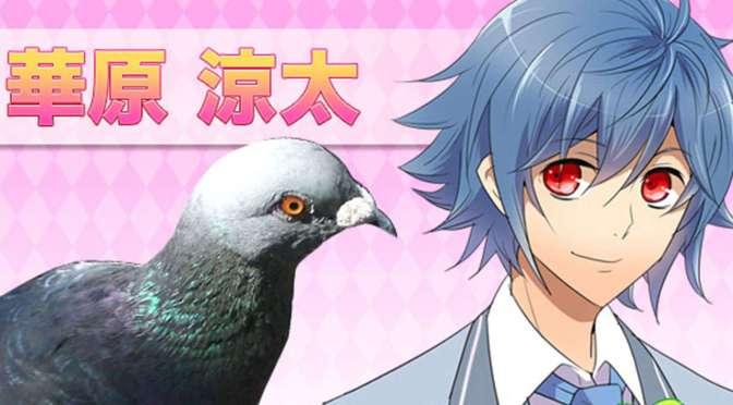 pigeon-dating-sim-hatoful-boyfriend-gets-a-release_s3ry[1]