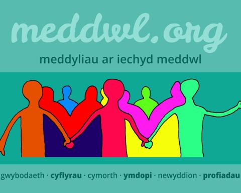 meddwl.org header image