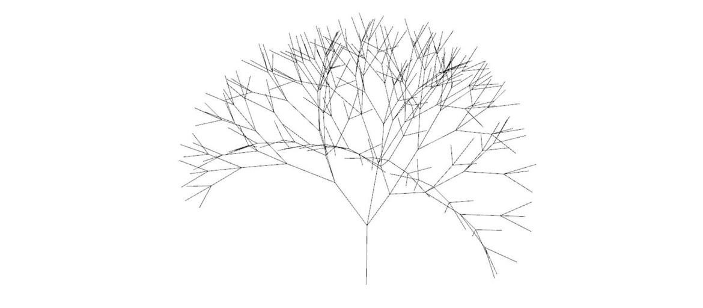 Rabbit_3D_Branching_1600x700