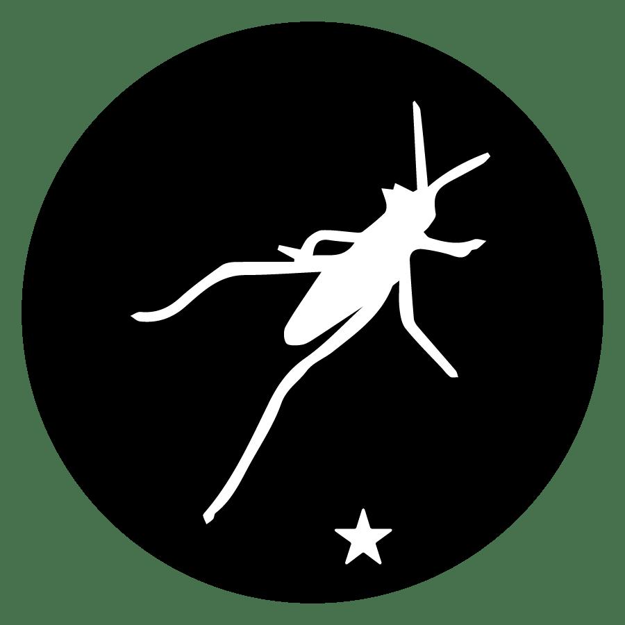 Workshop Grasshopper Beginner