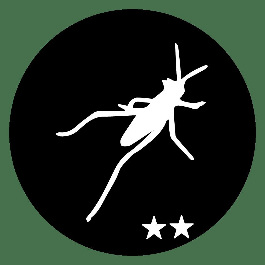 Workshop Grasshopper Intermediate