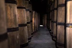 Descubra como os barris de madeira podem transformar o sabor e a cor das cachaças