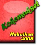 Kokemukset Helmikuu2008