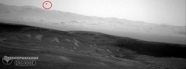 bird on Mars